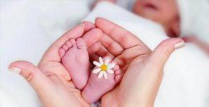 certificado-nacimiento